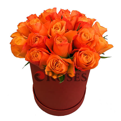 "Flowers in a box ""Firefox"""
