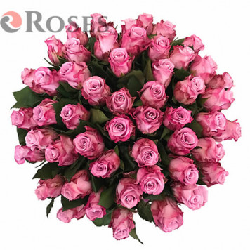 "Flowers in a Box ""Zanzibar"" 51roses"