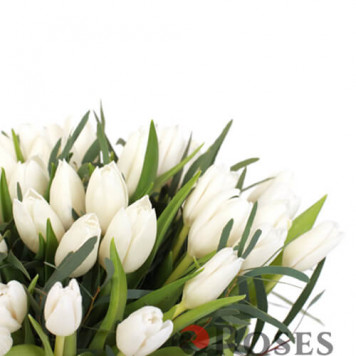 "Bouquet ""Malvina"" 51 tulips"