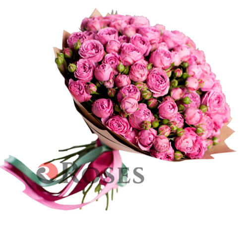 "Bouquet ""Saint-Tropez"" 25 shrub roses"