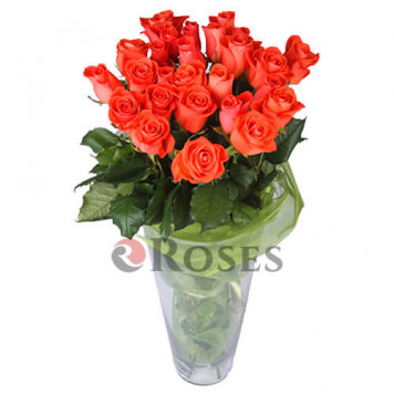 Wow 25 roses